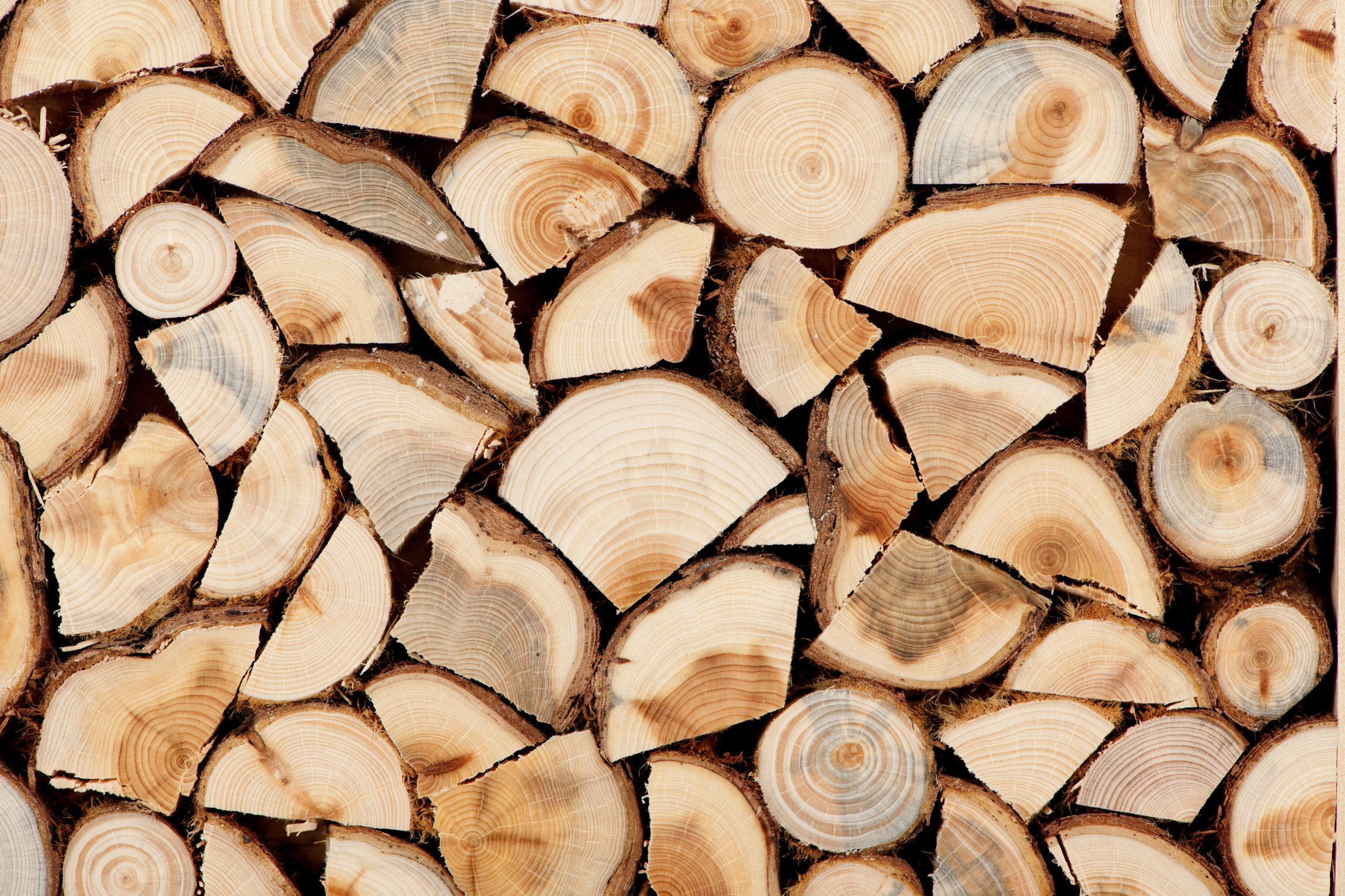 Not One Log Is Like Another Wisdom From The Hearth