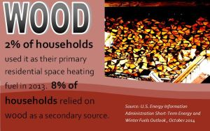 Nearly 2.5 million households (2% of all households!) used wood as their primary residential space heating fuel in 2013, which represents a 38% increase since 2004. About 8% of households use wood as a secondary source of heat in 2013, making wood second only to electricity as a supplemental heating fuel. That's according to the new U.S. Energy Information Administration Short-Term Energy and Winter Fuels Outlook. Thanks to Pellet Fuels Institute for the information! Click the picture for the full report.